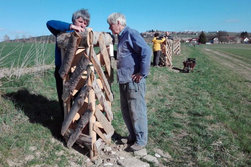 Jarní údržba stromořadí